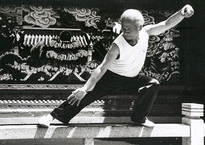 Master Ho Tai Chi