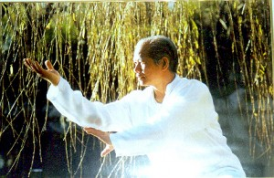 Master William Ho