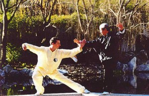 Tai Chi Fighting Form